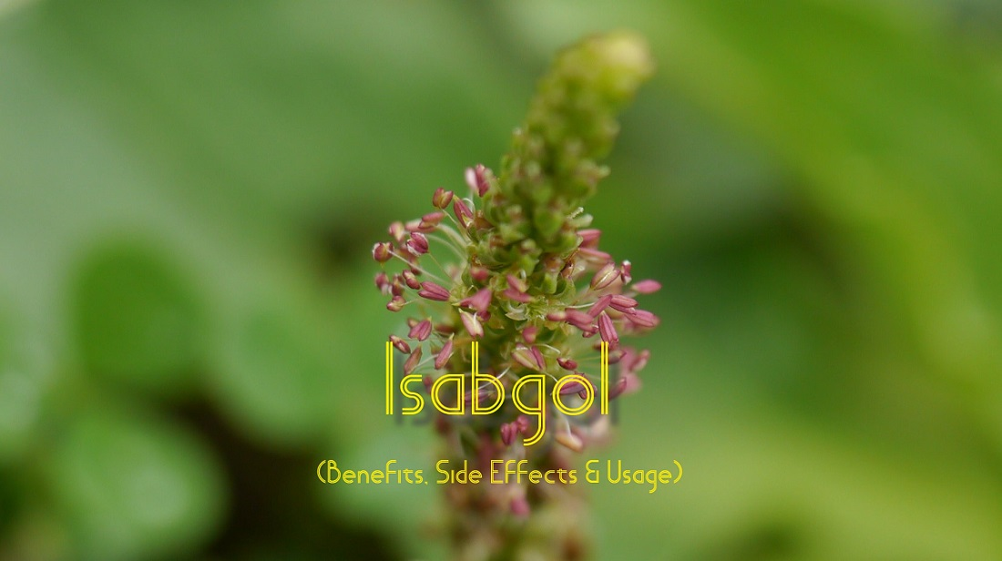 isabgol side effects and uses