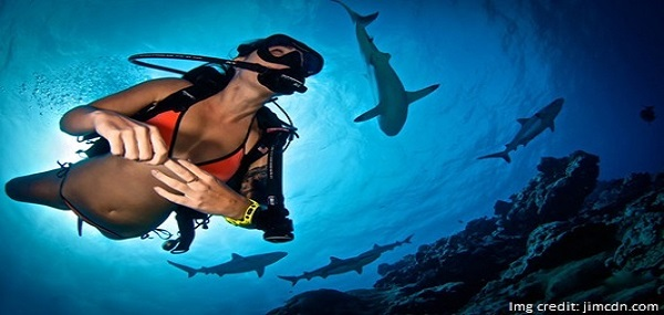 Scuba Diving on Andaman Trip
