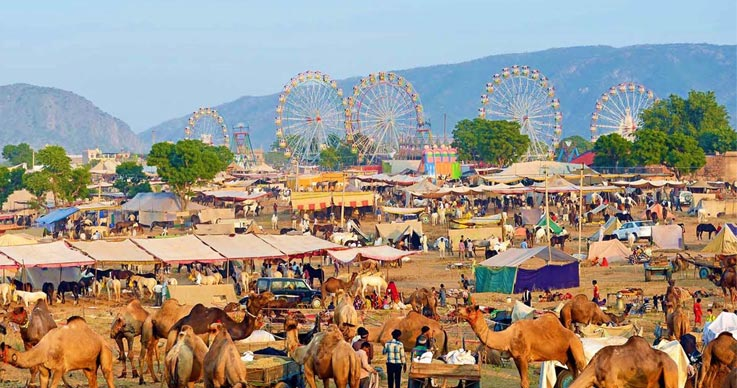 pushkar-camel-fair