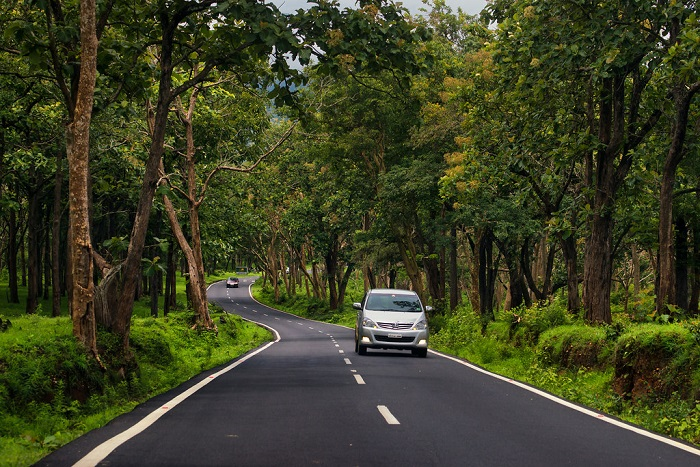 Bandipur Forest to Bangalore