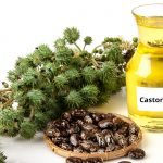 10 Best Castor Oils for Hair and Skin Available in India