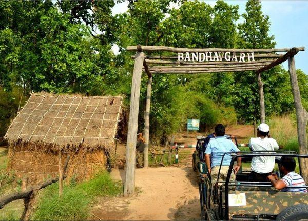 Bandhavgarh National Park- Madhya Pradesh