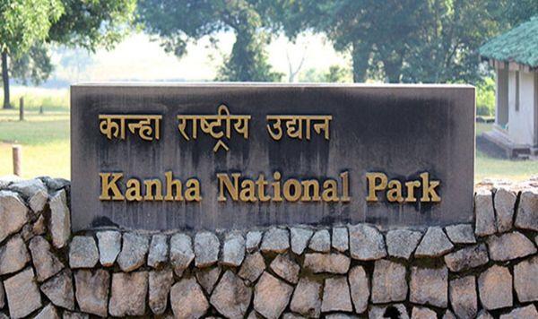 Kanha National Park- Madhya Pradesh