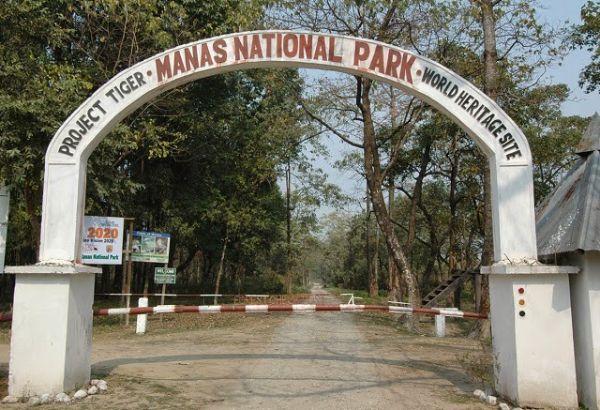 Manas Wildlife Sanctuary- Assam