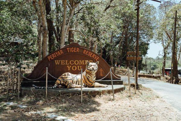 Periyar Wildlife Sanctuary- Kerala