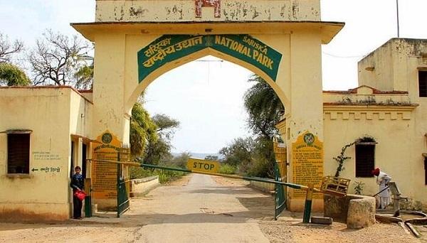 Sariska National Park - Rajasthan