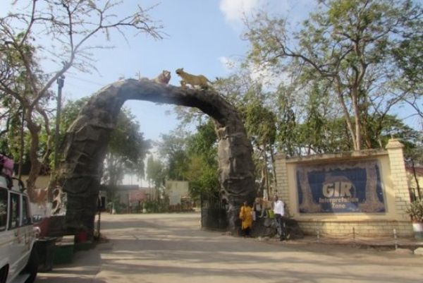 Sasan-Gir Wildlife Sanctuary- Gujarat