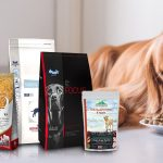 10 Best Dog Food In India for Better Health & Nutrition