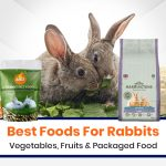 15 Best Foods for Rabbit: Vegetables, Fruits, and Packaged Food