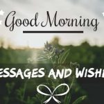 Good Morning Quotes, Wishes, Status and Greetings 2020