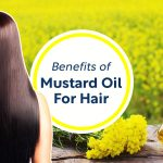 Mustard Oil for Hair – Make The Most of This Natural Blessing!