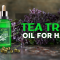 Here Is How To Use Tea Tree Oil For Hair, And Its Benefits?