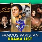 Famous Pakistani Drama List: TV Serials Timings & Synopsis