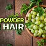 How to Use Amla Powder for Hair: Benefits and Ways to Apply It